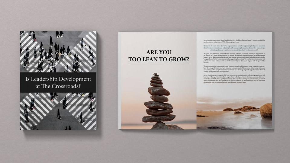 gallery-ebook-leadership