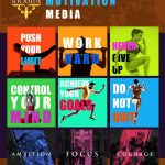 social-media-gallery-exercise